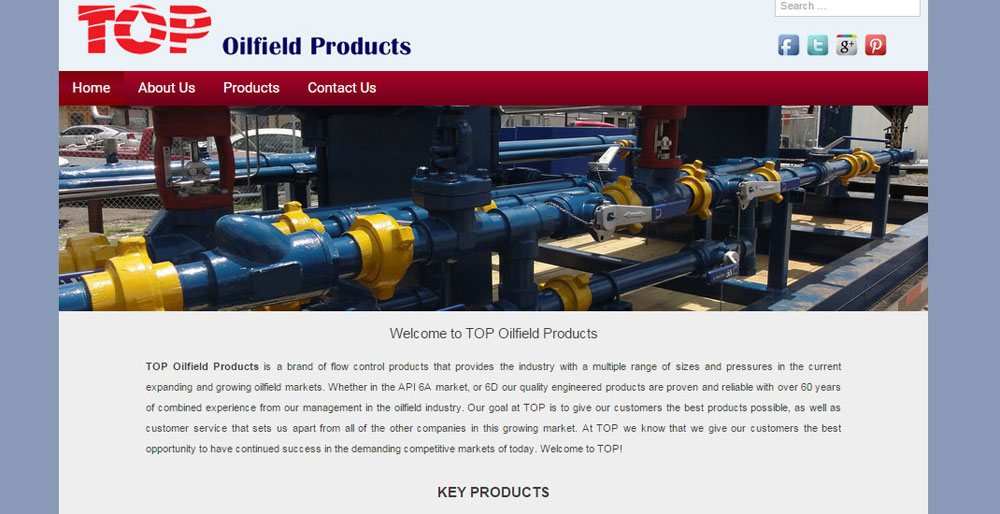 www.topvalveindustries.com